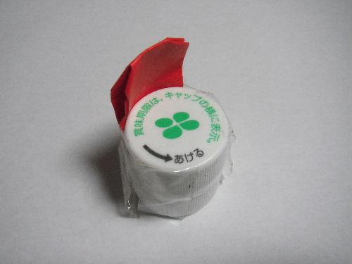 2010_11090001.JPG