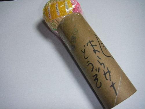 2010_11090002.JPG